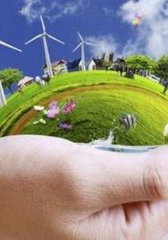 Dự báo thời tiết sản xuất điện gió - Ngành nghề đầy hứa hẹn trong tương lai
