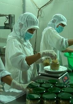 Ruốc hàu - Món ăn độc đáo của Quảng Ninh
