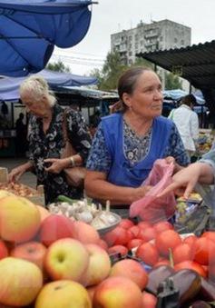 Kinh tế Nga đạt mức tăng trưởng cao nhất kể từ năm 2013