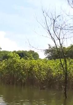 TT-Huế: Hàng trăm hộ dân miền núi mất đất sản xuất do ngập úng