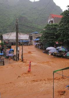 Lào Cai: Mưa lũ xối xả tràn đường