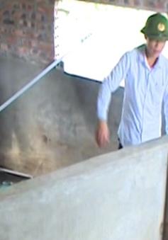 Hải Dương: 3 anh em ruột tử vong do ngạt khí biogas
