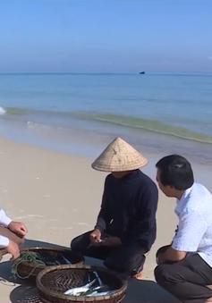 Ngư dân Quảng Trị được mùa đánh bắt hải sản