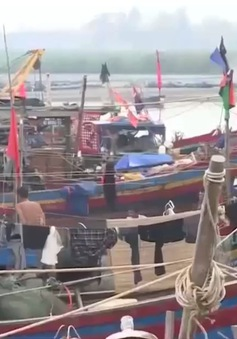"""Sau bão, ngư dân Hà Tĩnh vươn khơi trúng đậm """"lộc biển"""""""