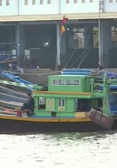 """Ngư trường Bình Thuận cạn kiệt do nạn đánh bắt """"tận diệt"""" hải sản"""