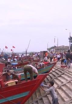 Ngư dân miền Trung yên tâm bám biển vươn khơi