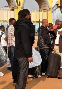 Hàng chục nghìn người châu Phi phải sơ tán mỗi ngày vì xung đột, bạo lực và thiên tai
