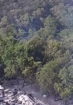 Nguy cơ cháy rừng mức cao ở Quảng Bình