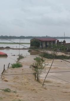 Nước sông lên nhanh, 300 hộ dân tại tỉnh Phú Thọ bị ngập sâu