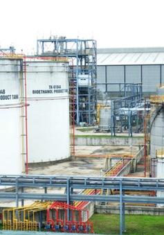 Tái khởi động nhà máy sản xuất ethanol Bình Phước và Dung Quất