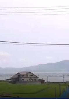 Nhật Bản: Phát triển nghề thủ công tại vùng bị động đất, sóng thần