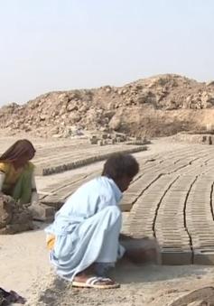 Hơn 40 triệu người trên thế giới đang phải sống trong cảnh nô lệ