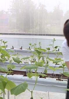 DN loay hoay với bộ tiêu chí xác định dự án nông nghiệp công nghệ cao