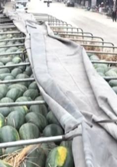 """Lập công ty """"ma"""" nhập khẩu nông sản trốn thuế GTGT"""