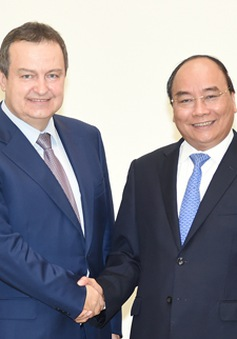 Thủ tướng Nguyễn Xuân Phúc tiếp Bộ trưởng Bộ Ngoại giao Serbia