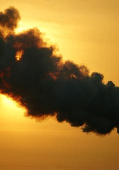 Ô nhiễm môi trường gây căng thẳng thần kinh