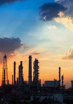 Giá dầu châu Á tăng sau thông tin Saudi Arabia giảm nguồn cung