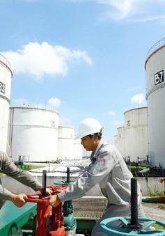 Cổ phần hóa một số đơn vị ngành dầu khí