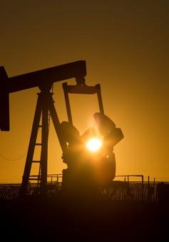 Giá dầu tăng bất chấp các động thái đến từ Mỹ