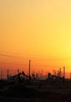 Giá dầu thế giới giảm sâu nhất từ tháng 11/2016