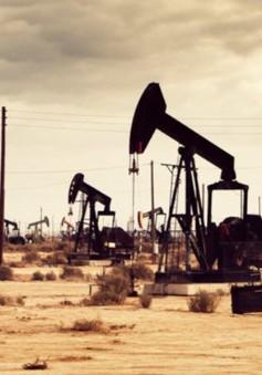 Viễn cảnh OPEC bắt tay với các công ty dầu khí đá phiến