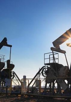 IEA: Nguy cơ mất ổn định nguồn cung và giá dầu do đầu tư yếu