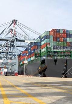 Cần tạo khung chính sách để các địa phương phát triển logistics