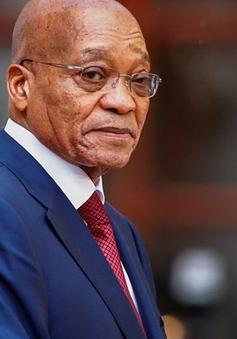 Tổng thống Nam Phi bác bỏ cáo buộc liên quan đến tham nhũng