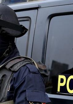 Ai Cập bắt giam hàng chục nghi can làm gián điệp cho Thổ Nhĩ Kỳ