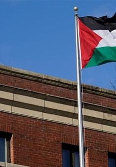 Mỹ đặt điều kiện để văn phòng tổ chức giải phóng Palestine hoạt động