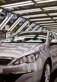 Pháp điều tra Tập đoàn ô tô PSA gian lận khí thải