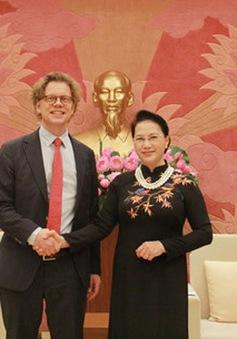 Chủ tịch Quốc hội tiếp Đại sứ Thụy Điển và Hungary đến chào xã giao