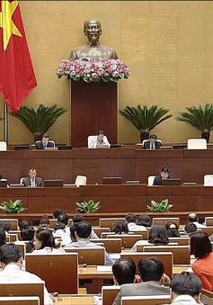 Quốc hội thảo luận Luật Thủy sản (sửa đổi)
