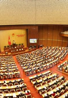 Hôm nay (3/11), Quốc hội thảo luận Luật Quản lý nợ công (sửa đổi)