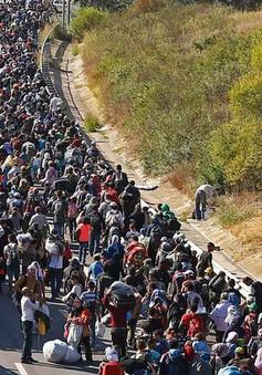 Italy, Pháp hối thúc EU đưa ra chính sách nhất quán về quy chế tị nạn