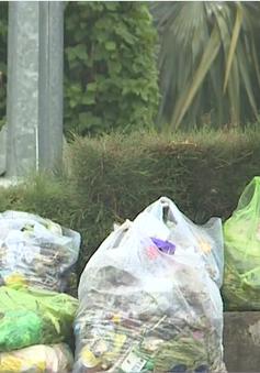 Bức bối ô nhiễm rác tại thị xã Ninh Hòa, Khánh Hòa