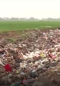 Tỷ lệ thu gom rác thải ở nông thôn chỉ đạt 50%