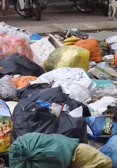 Hà Tĩnh: Rác ngập đường phố vì không có chỗ đổ