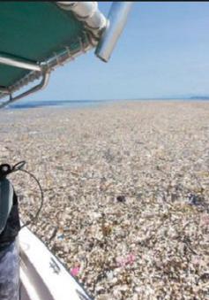 Honduras: Rác thải nhựa tràn ngập ở đảo du lịch
