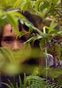 """""""Bầu trời đỏ"""" - bộ phim về chiến tranh Việt Nam qua góc nhìn đạo diễn Pháp"""