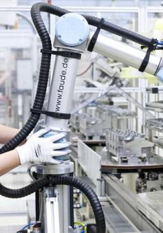 Con người và robot vẫn có thể chung sống hòa bình