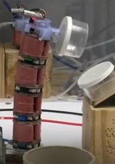Robot chân không có hình dạng con sâu bướm