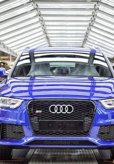Cựu quản lý hãng xe Audi bị bắt giữ vì liên quan vụ gian lận khí thải