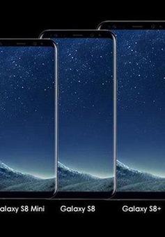 Không có chuyện Samsung ra mắt Galaxy S8 mini