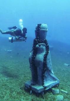 Ai Cập: Xây bảo tàng dưới đáy biển để bảo tồn san hô