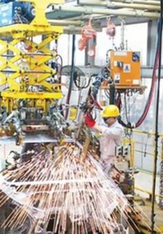 Phát triển kinh tế tư nhân trở thành động lực quan trọng của nền kinh tế