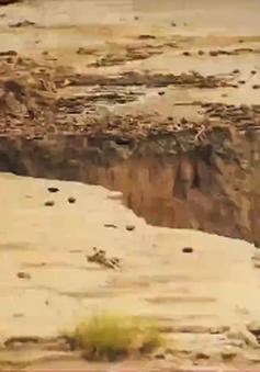 Hàng nghìn hộ dân ĐBSCL nằm trong vùng sạt lở