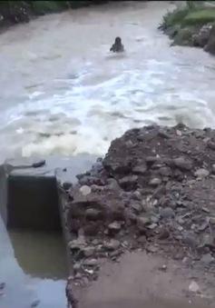 Quảng Ngãi: Nhiều tuyến đường sạt lở, người dân vùng cao đi lại khó khăn