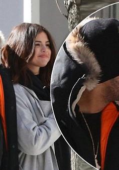 Selena Gomez: Tôi thật sự hạnh phúc với Abel