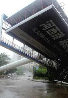 Bão Haitang tiếp tục đổ bộ vào Trung Quốc